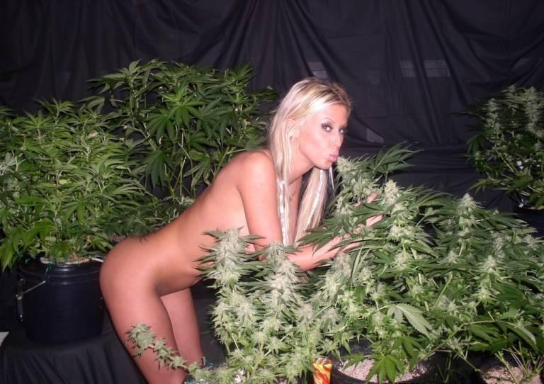 pics of pot plants with naked women